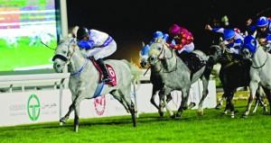 الحصان مبلش يفوز بكأس الخليج للخيول العربية الأصيلة