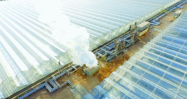 """""""تنمية نفط عمان"""" تتوقع الإعلان عن مشاريع واستكشافات جديدة"""