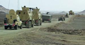 مصر تؤكد أهمية الحلول السياسية لأزمات دول المنطقة