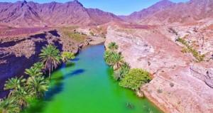 السلطنة تشارك الدول العربية الاحتفال باليوم العربي للمياه
