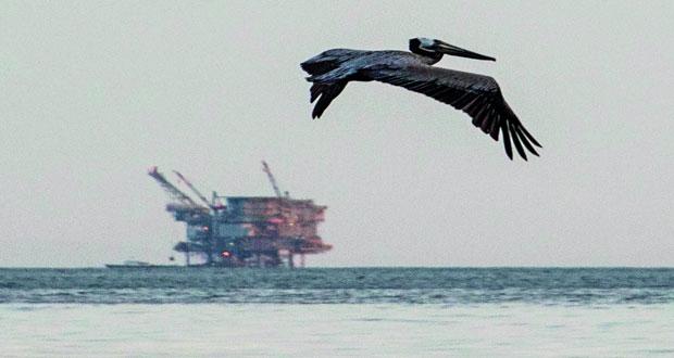 الخام العماني ينخفض 34 سنتًا .. والنفط يتراجع جراء مخاوف من نشوب حرب تجارية