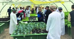 """خبراء """"الفاو"""" ومزارعو مصر والجزائر يطلعون على المزارع الاحيومائية في السلطنة"""