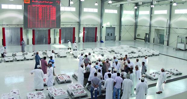 أكثر من 426 ألف ريال عماني قيمة مبيعات الأسماك بسوق الجملة