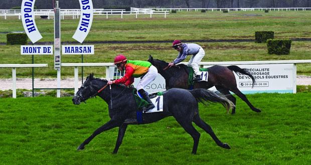 الحصان روض للخيالة السلطانية يفوز بالمركز الأول بفرنسا