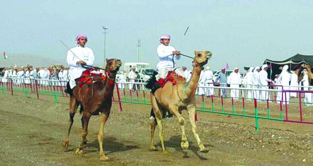 انطلاقة مثيرة لأشواط ومزاينة مهرجان الصافن الحادي عشر بعبري بمحافظة الظاهرة
