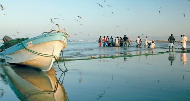 68.2 مليون ريال عماني قيمة الأسماك المنزلة بالصيد الحرفي بنهاية الربع الأول