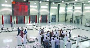 1.2 مليون ريال عماني قيمة مبيعات سـوق الجملة المركزي للأسـماك في الربع الأول من العام الجاري