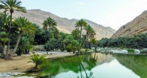 """""""وادي بني خالد"""" وجهة سياحية نشطة على مدار العام"""