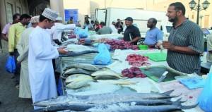 استقرار أسعار الأسماك بسوق نـزوى
