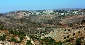 قوات الاحتلال تقتحم أحياء وتشدد إجراءاتها في القدس المحتلة