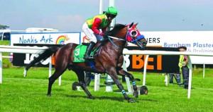 الخيالة السلطانية تفوز بالمركز الأول مرتين في سباق تشبستو البريطاني