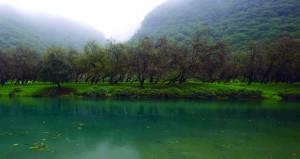 السياح يبدأون بالتوافد إلى محافظة ظفار مع اكتساء الأرض ببشائر موسم الخريف