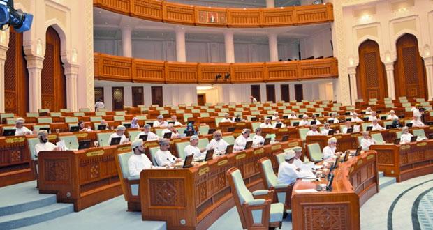 """مجلس الدولة يوافق على """"دراسة"""" حول سبل معالجة التحديات التي تواجه الصناعات الحرفية"""