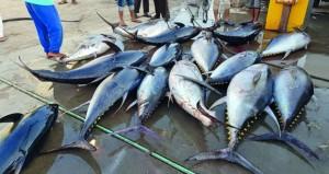 مركز العلوم البحرية والسمكية بوزارة الزراعة والثروة السمكية يعزز المجال البحثي والسمكي