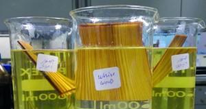"""""""لينيوم الطلابية"""" تبتكر الخشب الشفاف بمواصفات عالية وبإستخدامات متعددة"""