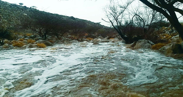 أمطار متفرقة على ولايات محافظة الظاهرة وجريان وادي البانة بعبري