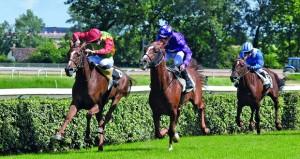 بنت نزوى للخيالة السلطانية تفوز بسباق مونتابون الفرنسي