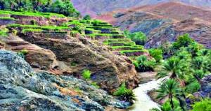 تباين التضاريس تفتح آفاقا واسعة للسياحة لنشاط غير مسبوق في محافظة شمال الباطنة