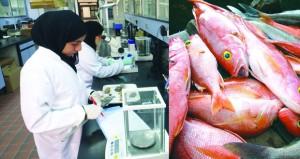 المراكز البحثية السمكية تساهم في تطوير العمل وزيادة الإنتاج وتطوير الصناعات السمكية في السلطنة