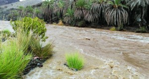 هطول أمطار متفاوتة الغزارة على عدد من المحافظات