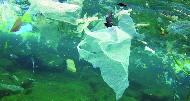 89% من المشاركين أيدوا منع استخدام الأكياس البلاستيكية في الأسواق والمراكز التجارية