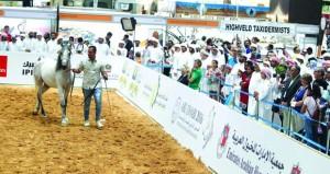 السلطنة تشارك بمعرض أبوظبي الدولي للصيد والفروسية في سبتمبر المقبل