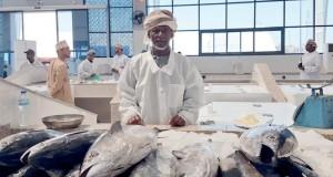 القطاع السمكي بالسويق يسهم في تحقيق الأمن الغذائي وتوفير فرص عمل