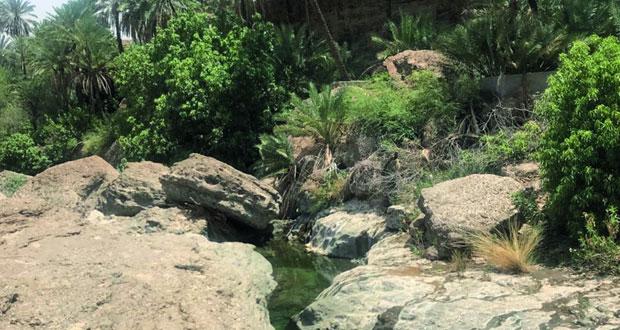 وادي بلت بضنك .. مياه جارية وجبال شاهقة تستهوي السياح