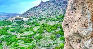 بطقس بارد شتاء ومعتدل صيفا الجبل الأخضر مقومات طبيعية وتنوع جغرافي وبيئي وزراعي