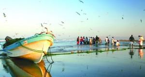 وكيل الثروة السمكية: منح 50 ترخيص صيد تجاري للسفن التجارية العملاقة .. وحجم الاستثمار السمكي 1.3 مليار ريال عماني في 2023