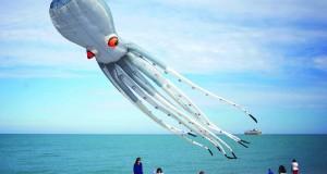 طائرة على شكل أخطبوط تطير فى سماء شاطئ بفرنسا بمناسبة النسخة ال 20 للمهرجان الدولي