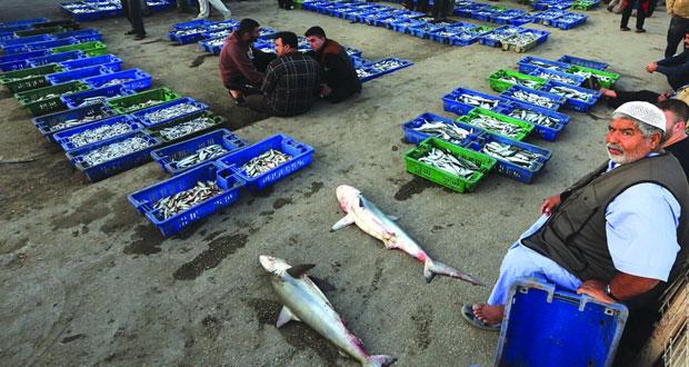 الصيادون الفلسطينيون لـ(الوطن) : ممارسات إسرائيلية ممنهجة ضدنا وأحوالنا تزداد سوءا يوما بعد يوم