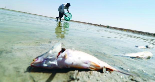 العراق يشهد نقصا كبيرا في منسوب المياه بسبب الجفاف