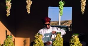 """عدسة عدنان البلوشي تنقل مراحل """"مهرجان العنب"""" بالطائف"""