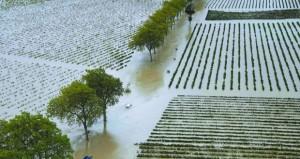 حصيلة ضحايا فيضانات جنوب فرنسا ترتفع إلى 13 قتيلًا