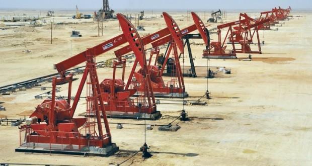 """""""تنمية نفط عمان"""" تميط اللثام عن نظام """"شفافية سلسلة الإمداد"""" العام المقبل"""