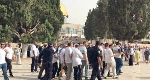 قوات الاحتلال تقتحم (عوفر) وتعتدي على أسيرات (هشارون)