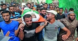 جيش الاحتلال يغتال مسنا بغزة .. ومستوطنون يسرقون ممتلكات فلسطينية بسلون
