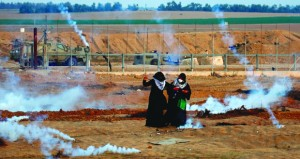المزارعون الفلسطينيون يواجهون تخريب أشجار الزيتون في الضفة