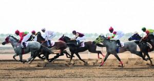 نخبة الخيول تشارك في سباق كأس العيد الوطني (48) المجيد اليوم