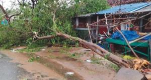وفاة 11 شخصا مع وصول الإعصار جاجا لجنوب الهند