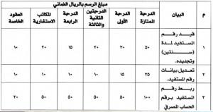 قرار وزاري بشأن القيد في سجل المستفيدين لدى وزارة المالية