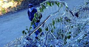 الجيش الهندي ينقذ أكثر من 2500 شخص تقطعت بهم السبل بسبب الثلوج