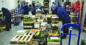 وزيرة العمل البريطانية: اتفاق (بركسيت) أفضل اختيار