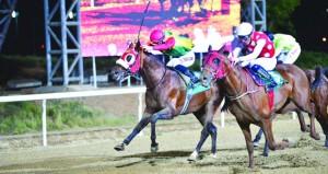 الحصان الثراء للخيالة السلطانية وصيفا على مضمار العين الإماراتي