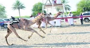 17 شوطا من الإثارة والحماس في انطلاق منافسات السباق العام على ميدان سيح الطيبات بصحم