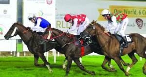 الحصان جاسر يتوج بالسباق التحضيري لكأس رئيس دولة الإمارات للخيول العربية