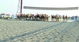 17 شوطا في انطلاق السباق العام بمضمار الفليج ببركاء تنظمه الهجانة السلطانية