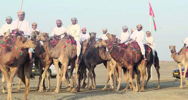 انطلاق فعاليات مهرجان النعيمي السنوي التاسع عشر لعرضة الهجن والخيل بسيح الطيبات بصحم