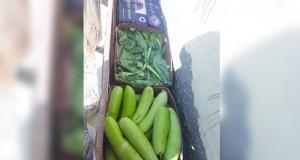 ضبط قوى عاملة وافدة تقوم بحفظ مواد غذائية في بيئة غير مرخصة بالمصنعة